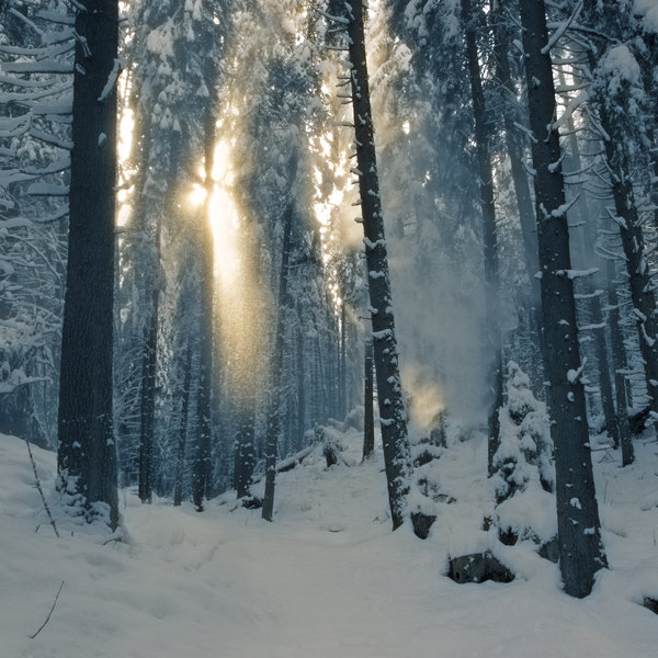 winter light by Floriandra via DeviantArt.com